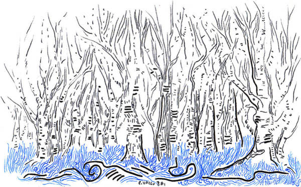 Drawing - The Forest For The Trees An Aceo by Regina Valluzzi