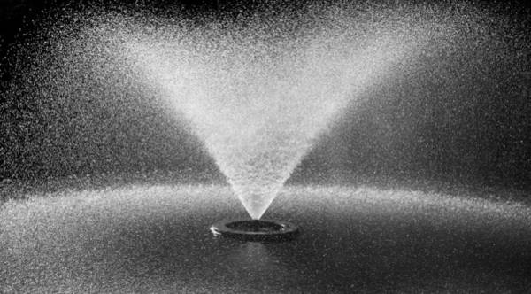 Photograph - The Fountain by Carolyn Marshall