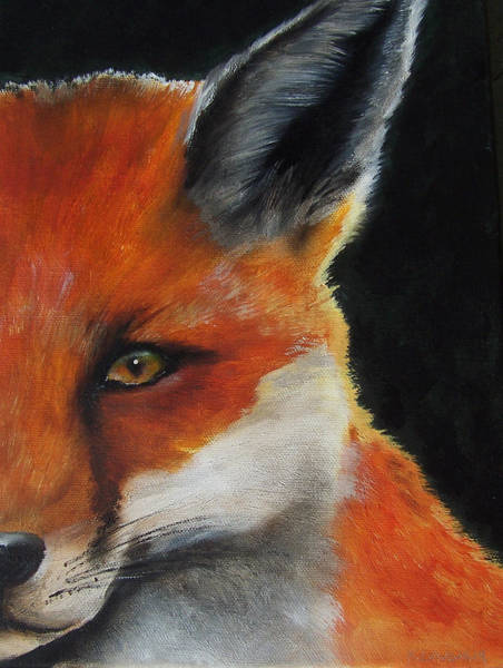 Painting - The Fox by Kathy Laughlin