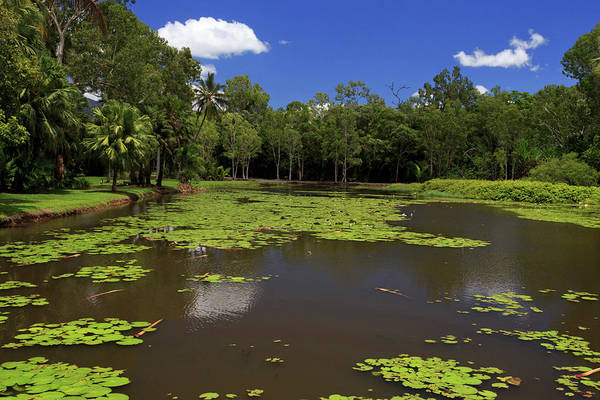 Far North Queensland Wall Art - Photograph - The Fresh Water Lake Section by Paul Dymond