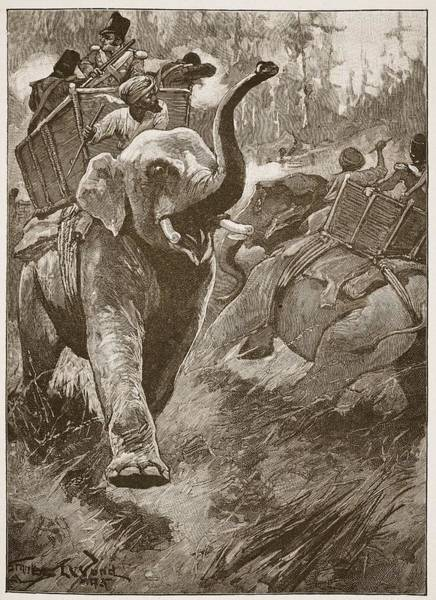 Soldier Drawing - The Frightened Elephants Rushed Back by Stanley L. Wood