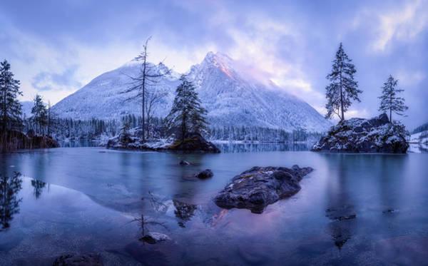 Fir Trees Photograph - The Frozen Mountain by Daniel Fleischhacker