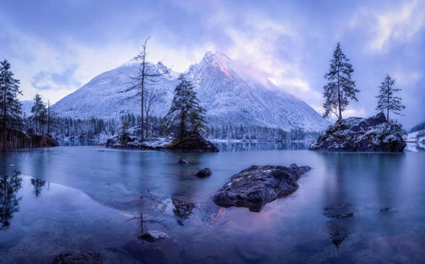 Pine Trees Photograph - The Frozen Mountain by Daniel Fleischhacker