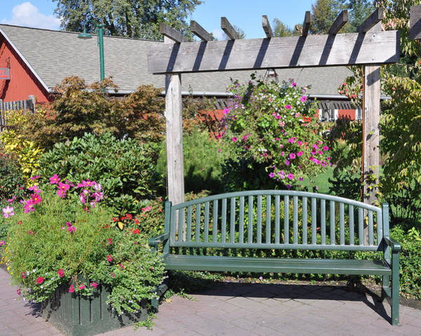 Photograph - The Garden Bench by Kirt Tisdale
