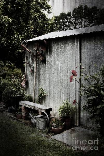 Photograph - The Garden Shed by Fran Woods