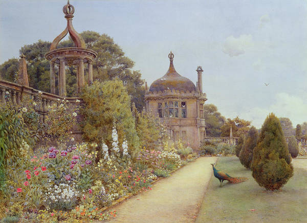 Peacocks Painting - The Gardens At Montacute In Somerset by Ernest Arthur Rowe