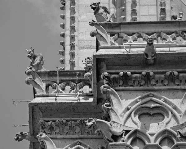 Photograph - The Gargoyles Of Notre Dame Paris France by Toby McGuire