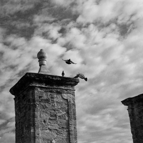 Photograph - The Gate At Castillo by Beverly Stapleton