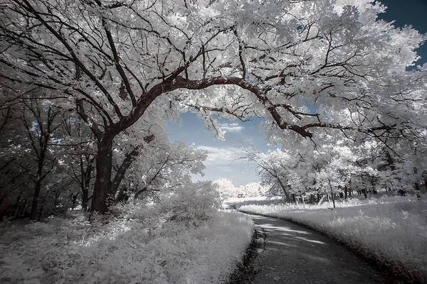 Photograph - The Gateway by Scott Bean