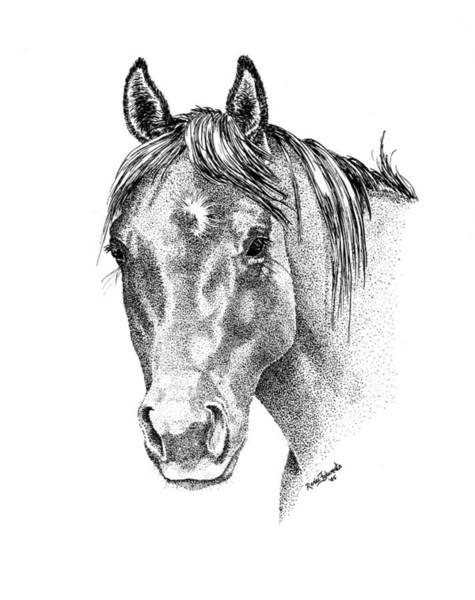 Stipple Drawing - The Gentle Eye Horse Head Study by Renee Forth-Fukumoto