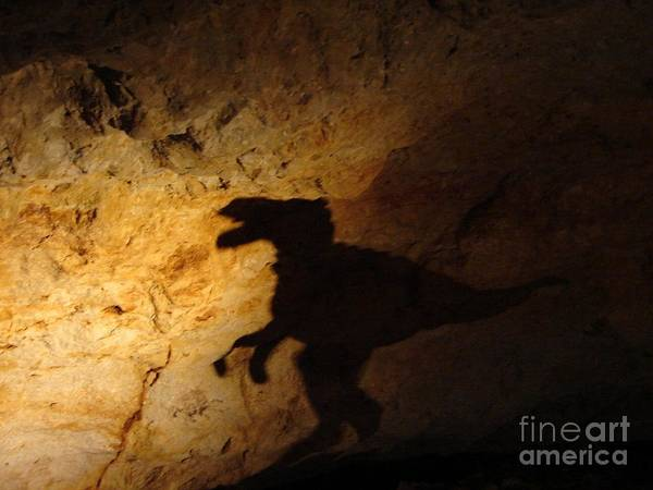 Photograph - The Ghost Of A Dinosaur by Cristina Stefan