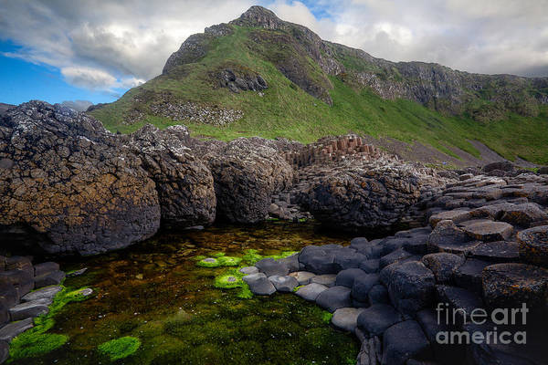 Basalt Photograph - The Giant's Causeway - Peak And Pool by Inge Johnsson
