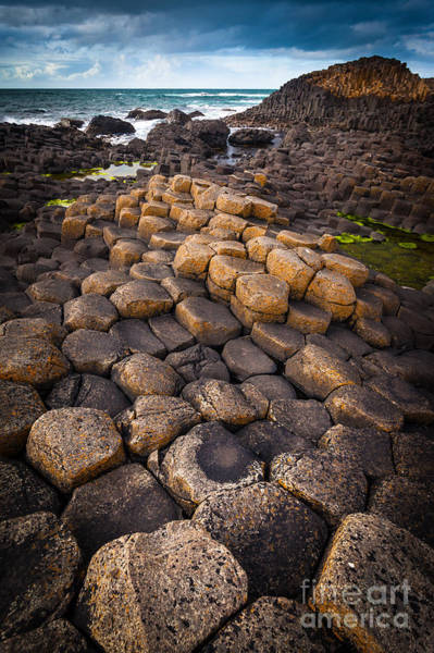 Basalt Photograph - The Giant's Causeway - Rocky Road by Inge Johnsson