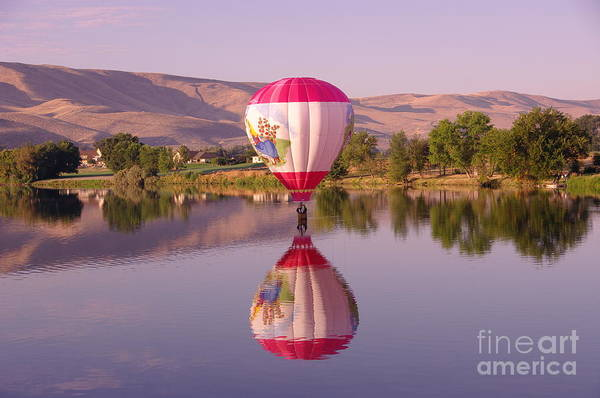 Swan Valley Photograph - The Girl Lands  by Jeff Swan