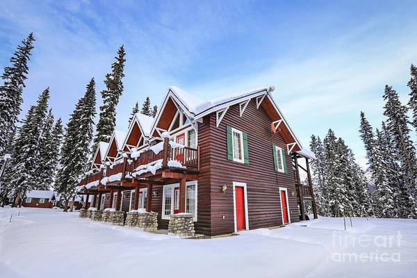 Alberta Wall Art - Photograph - The Glory Of Winter's Chill by Evelina Kremsdorf