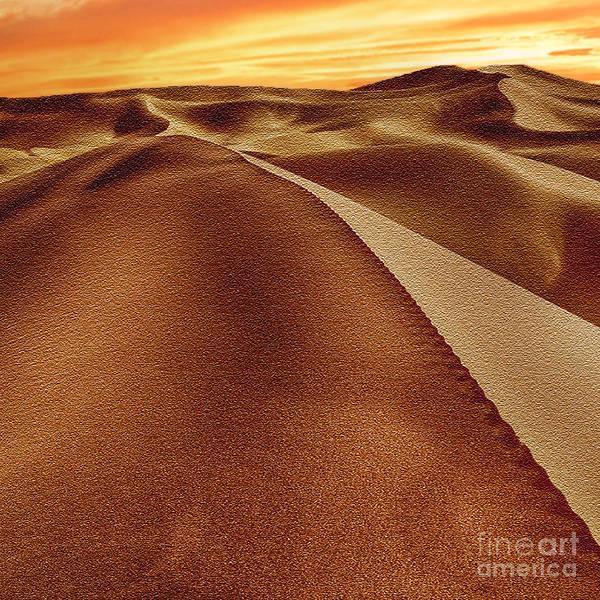 Yuma Photograph - The Golden Hour Anza Borrego Desert by Bob and Nadine Johnston