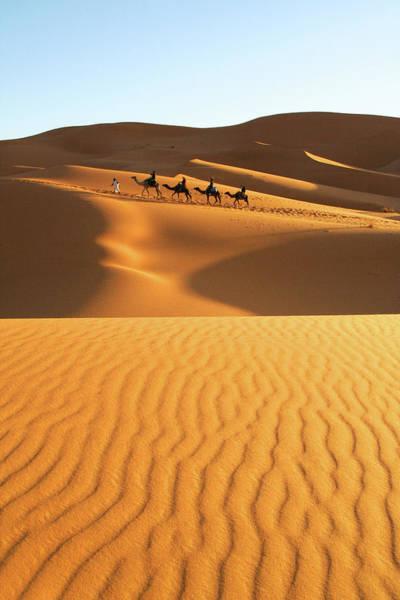 Photograph - The Golden Sahara Desert by Chin Ping, Goh