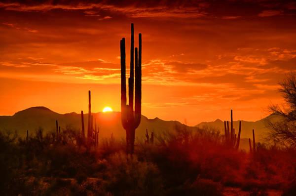 The Golden Southwest Skies  Art Print