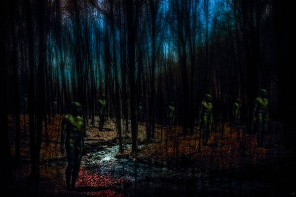Photograph - The Golems Of Darkwoods Forest by Chris Lord