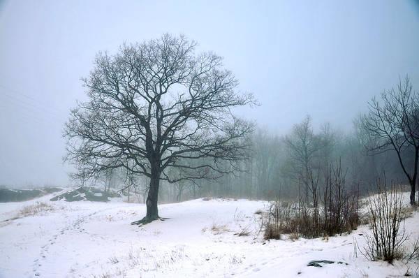Photograph - The Good Loneliness by Randi Grace Nilsberg