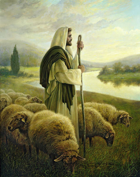 Wall Art - Painting - The Good Shepherd by Greg Olsen