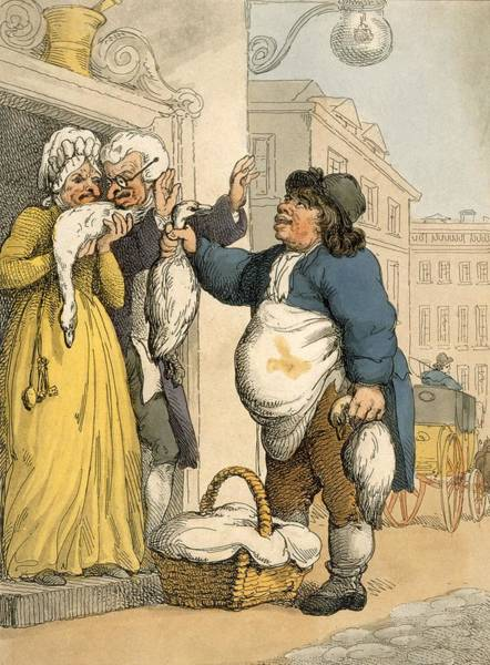 Goose Drawing - The Goose Seller, Plate No.2 by Thomas Rowlandson