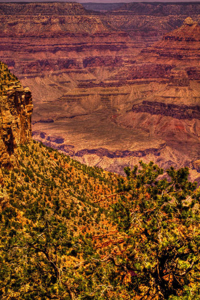 Photograph - The Grand Canyon II by David Patterson