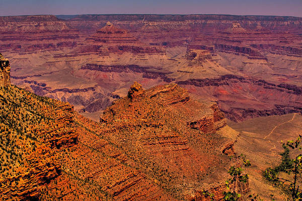 Photograph - The Grand Canyon Iv by David Patterson