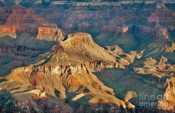 Photograph - The Grand Canyon by Mae Wertz