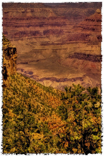 Photograph - The Grand Canyon Vintage Americana II by David Patterson