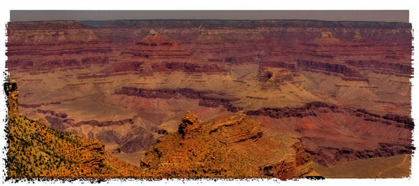 Photograph - The Grand Canyon Vintage Americana IIi by David Patterson