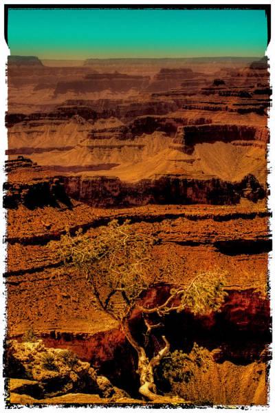 Photograph - The Grand Canyon Vintage Americana Vi by David Patterson