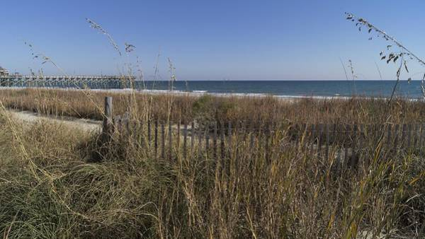 Photograph - The Grand Strand by MM Anderson