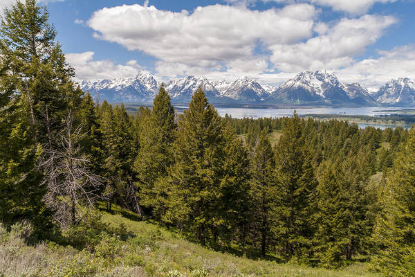 Wall Art - Photograph - The Grand Tetons From Signal Mountain - Grand Teton National Park Wyoming by Brian Harig