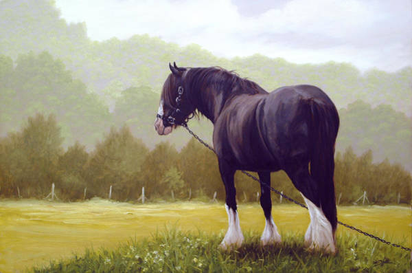 Wall Art - Painting - The Grass Is Greener  by John Silver