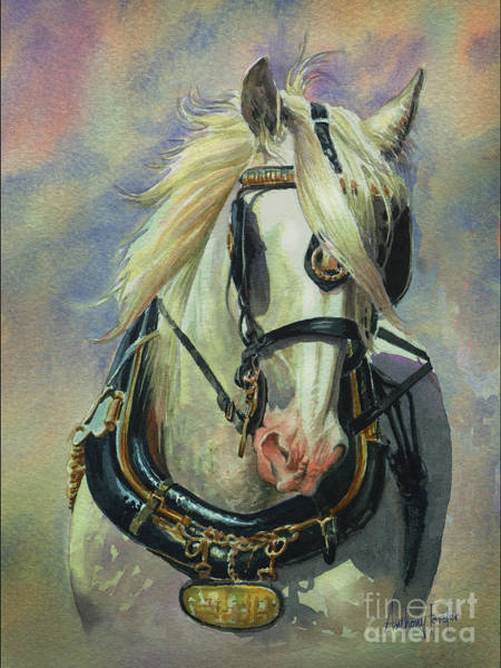 Wall Art - Painting - The Gray Shire Horse by Anthony Forster