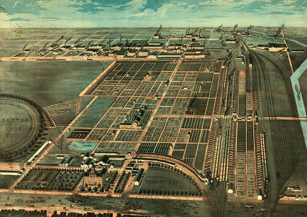 Vintage Chicago Drawing - The Great Union Stock Yards Of Chicago By By Walsh & Co by Litz Collection