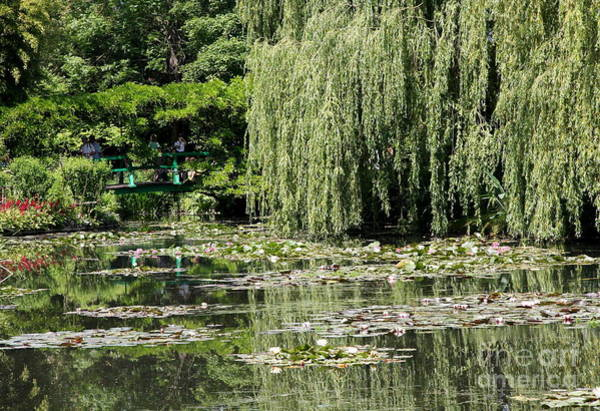 Claude Monet Photograph - The Green Bridge - Monets Garden by Christiane Schulze Art And Photography