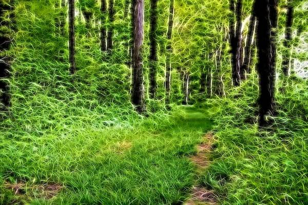 Wall Art - Digital Art - The Green Path by Dan Sproul
