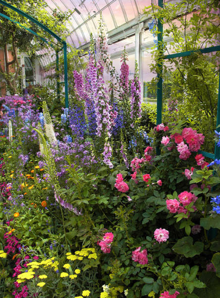 Foxglove Photograph - The Greenhouse by Jessica Jenney