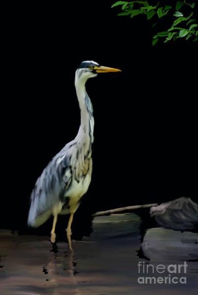 Digital Art - The Grey Heron by Brian Roscorla