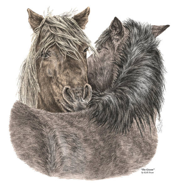 Drawing - The Groom - Chincoteague Pony Print - Color Tinted by Kelli Swan