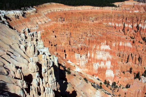 Photograph - The Grotto At Bryce Canyon by Aidan Moran