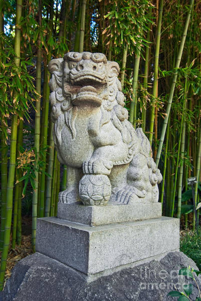 Lion Statue Photograph - The Guardian - Chinese Guardian Lion Statue With A Bamboo Backdrop. by Jamie Pham