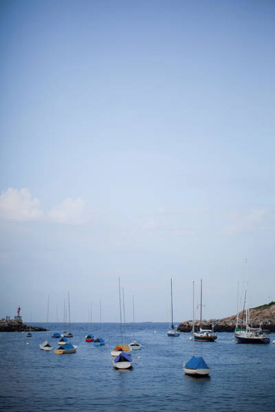 Wall Art - Photograph - The Harbor Filled With Boats by Rachel Buckley
