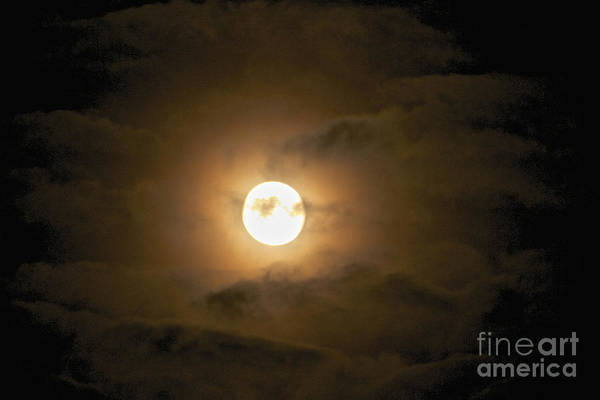 Photograph - The Harvest Moon by William Norton