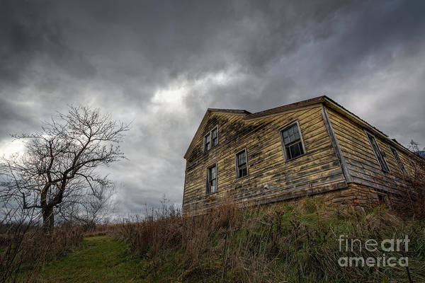 Afraid Photograph - The Haunted Color by Michael Ver Sprill