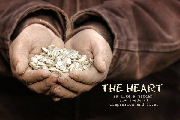 Wall Art - Photograph - The Heart by Lori Deiter