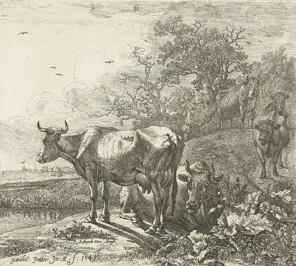 Herd Drawing - The Herdsman, Paulus Potter by Paulus Potter