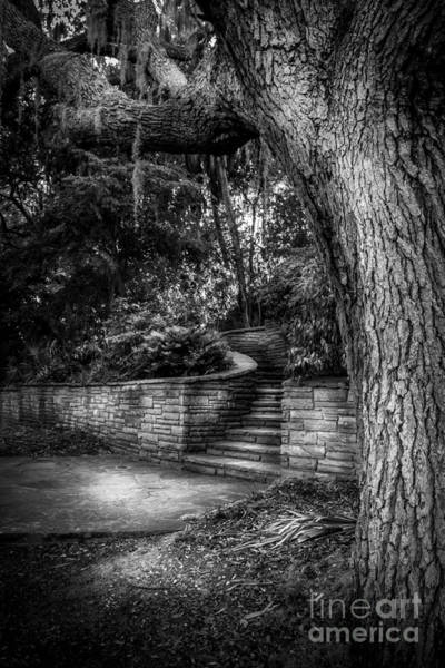 Mound Photograph - The Hidden Steps 1 by Marvin Spates